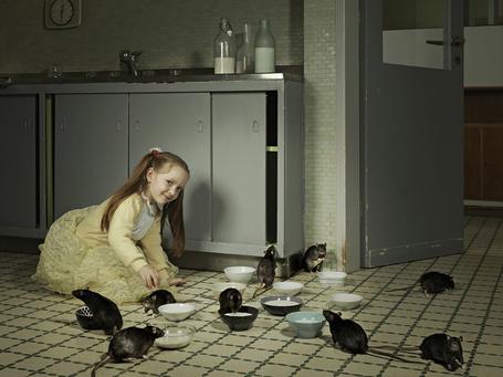 Фото Маленькая хитрая девочка поит молоком крыс, пара фотографов Winkler Noah