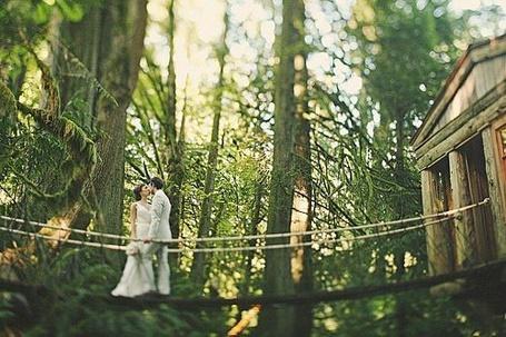 Фото Влюбленные на мосту посреди леса