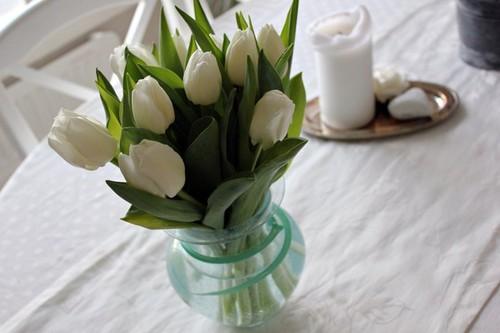 Фото Белые тюльпаны стоят на белой скатерти
