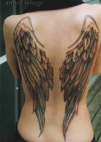 ���� � ������� �� ����� ���������� ������ ������, angel wings (� MMS), ���������: 01.03.2012 12:10