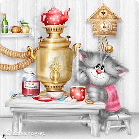 Фото Киска сидит за столом и пьет чай