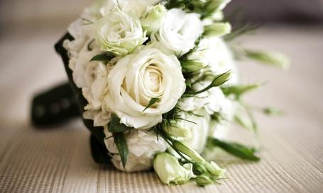 Фото Букет белых роз (© Mary), добавлено: 02.03.2012 19:09