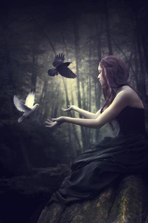 Фото Девушка протягивает руки навстречу летящему голубю, рядом пролетает черный ворон (© ColniwKo), добавлено: 02.03.2012 21:18