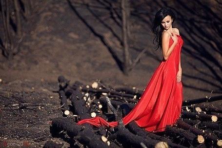 Фото Девушка в длинном красном платье стоит среди распиленных деревьев (© Анютка765), добавлено: 05.03.2012 13:49