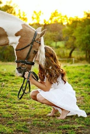 Фото Девушка целует лошадь (© Mary), добавлено: 06.03.2012 01:35