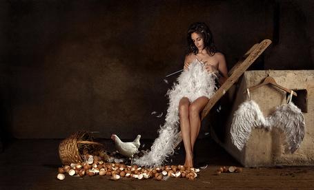 Фото Девушка сидит в курятнике и вяжет себе ангельские крылья из перьев, автор Alisa Andrei (© Radieschen), добавлено: 06.03.2012 17:20