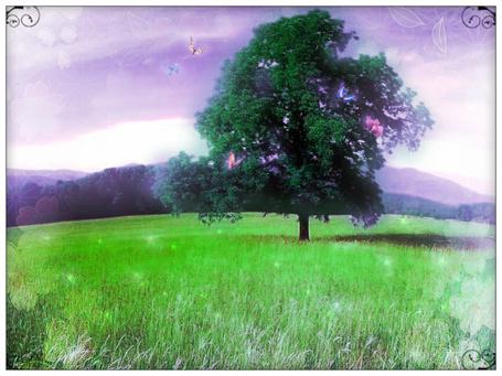 Фото Волшебное дерево на лугу (© Флориссия), добавлено: 10.03.2012 12:18