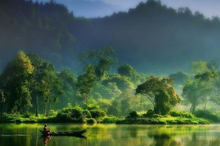 Фото Человек плывет на лодке по реке в джунглях, автор hardibudi (© Rainy), добавлено: 11.03.2012 18:19