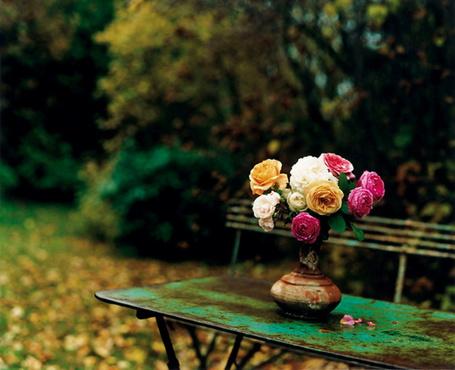 Фото Цветы в вазе на скамье (© ВалерияВалердинова), добавлено: 21.03.2012 14:16