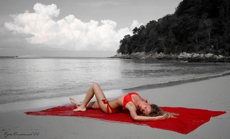 Фото Девушка загорает на пляже (© Anatol), добавлено: 21.03.2012 18:47
