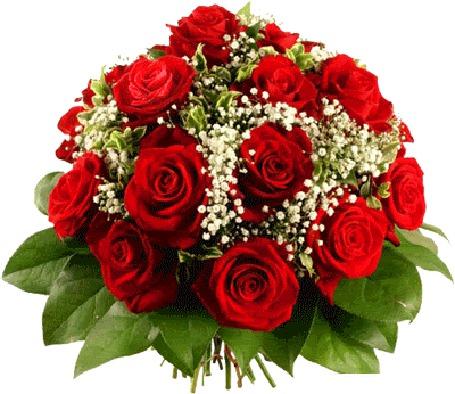 Фото Сверкающий букет красных роз (© Morena), добавлено: 23.03.2012 09:11