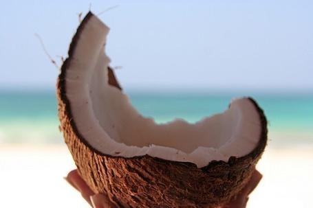 Фото Разломленный кокос на фоне моря (© StepUp), добавлено: 26.03.2012 09:23