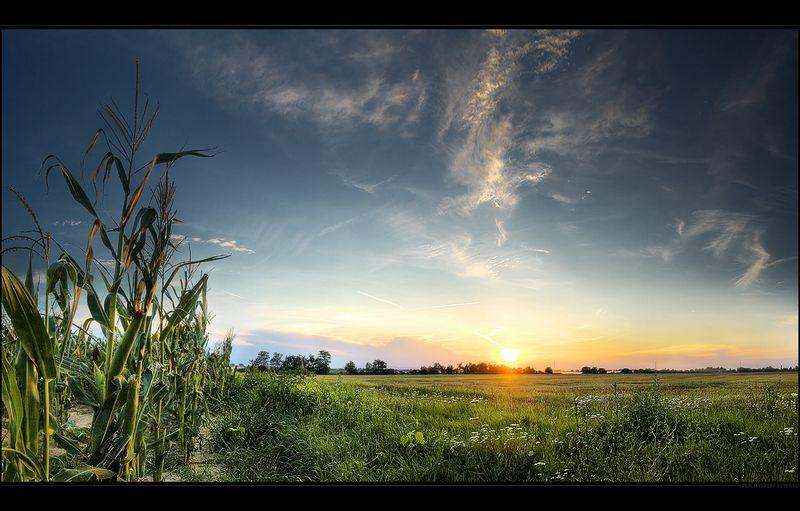 Фото Восход солнца