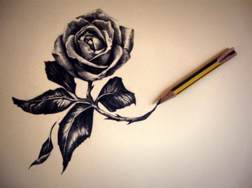 Тэги предметы рисунки цветы