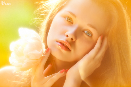 Фото Нежная девушка с цветком в руках (© ВалерияВалердинова), добавлено: 08.04.2012 14:19