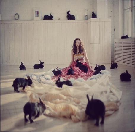 Фото Девушка в окружении черных кроликов (© ColniwKo), добавлено: 09.04.2012 01:50