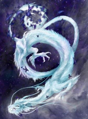 Фото Домашние питомцы - Снежный дракон. Морозно-снежный вихрь в первый день зимы!
