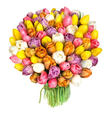 Фото Букет тюльпанов (© Mary), добавлено: 24.04.2012 21:23