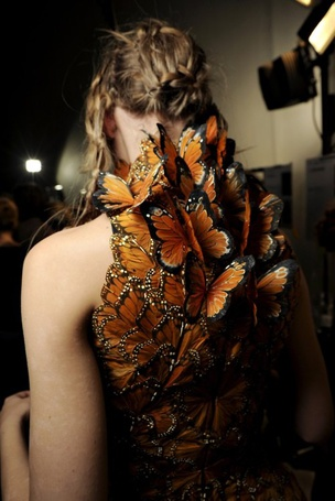 Фото Платье из бабочек (© Mary), добавлено: 25.04.2012 19:44