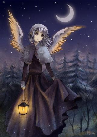 Фото Эльфийка с фонарём в тишине зимней ночи
