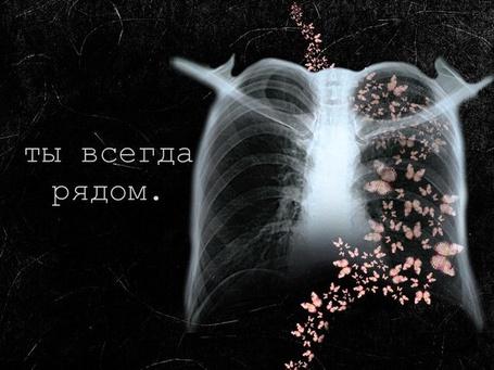 Фото Бабочки в животе (Ты всегда рядом.) (© Julia_57), добавлено: 30.04.2012 13:05