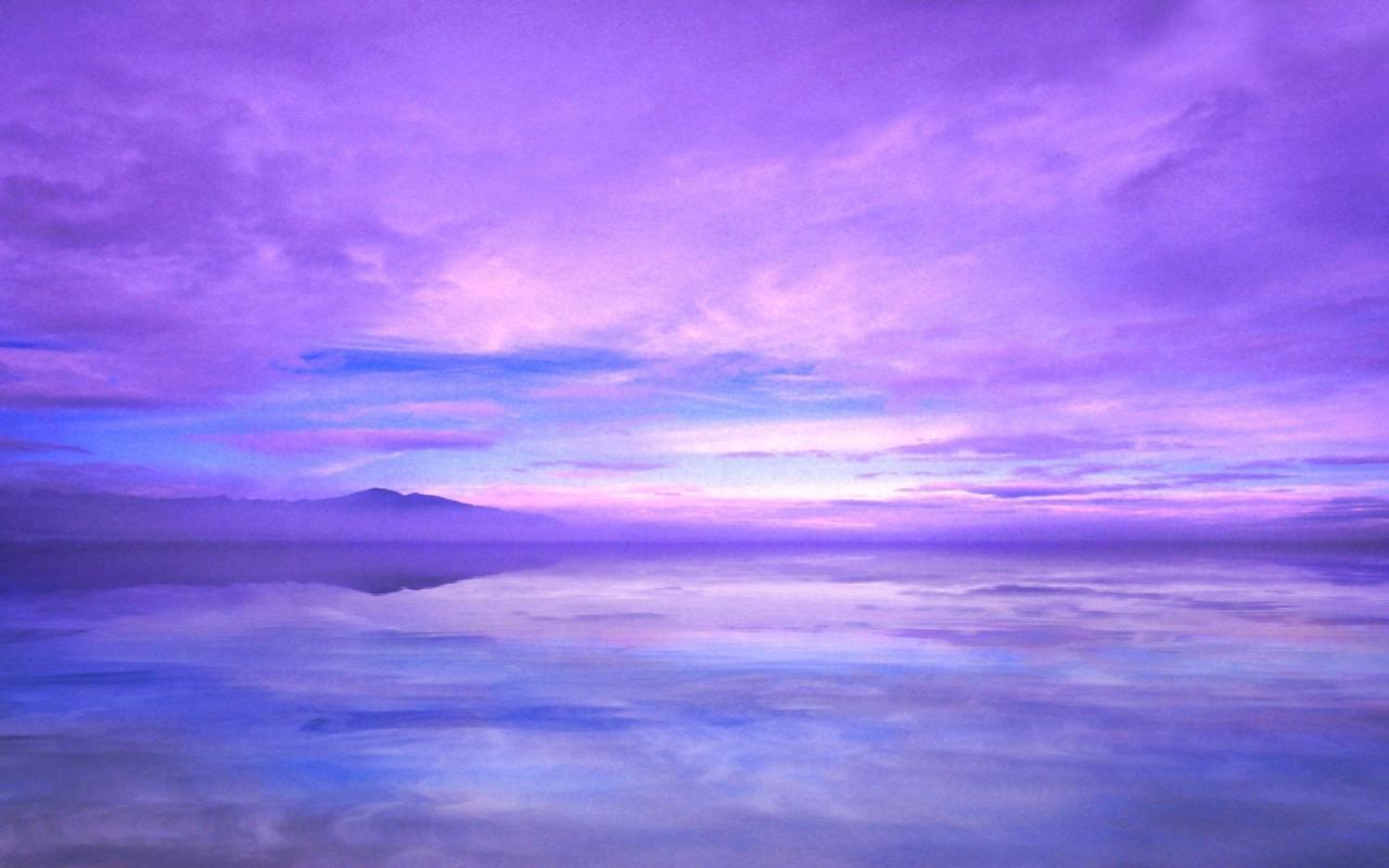 Эви киви фото балтийское небо нужно