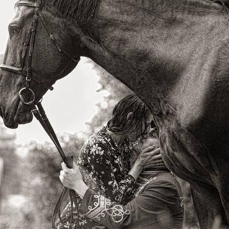 Фото Страсть двух влюбленных, парень держит лошадь за поводья