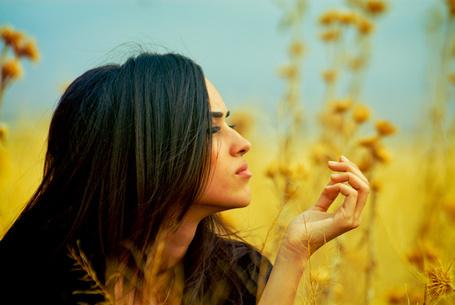 Фото Девушка в профиль на фоне полевых цветов. Фотограф Metin Demiralay (© Natko), добавлено: 13.05.2012 13:20