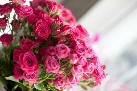 Фото Букет розовых роз (© Кофе мой друг), добавлено: 13.05.2012 18:12