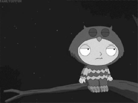 Фото Сова прилетела поболтать (Hi there. Not interested. -Ok) из м/ф Гриффины / Family Guy