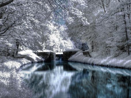 Фото Зима на речных шлюзах. Деревья покрыты снегом