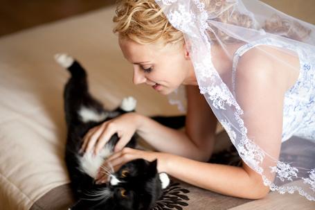 Фото Девушка играет с кошкой (© Mary), добавлено: 23.05.2012 11:13