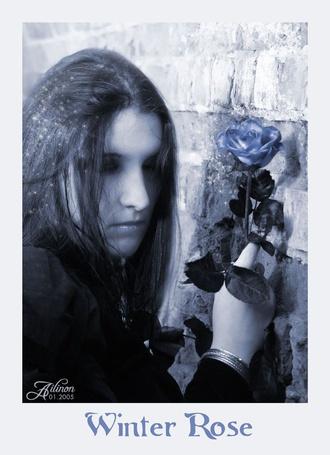 Фото Девушка с розой стоит у стены (Winter roze / Зимняя роза)