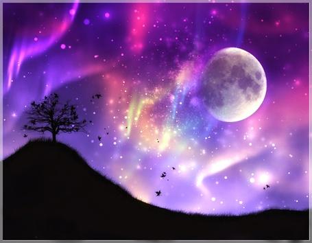 Фото Дерево на холме на фоне разноцветного сияния в ночном небе