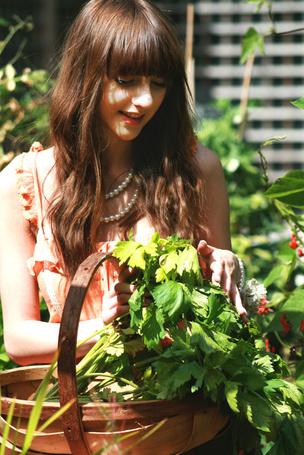 Фото Девушка в персиковом платье собирает зелень (© Юки-тян), добавлено: 01.06.2012 15:21