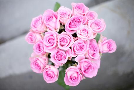 Фото Букет из розовых роз