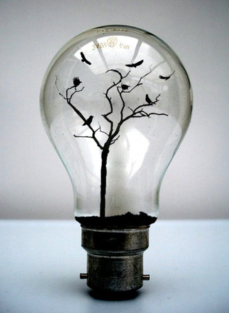 Фото Лампочка, в которой растет дерево и летают птицы