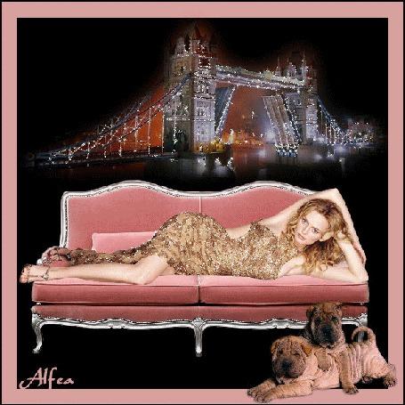 Фото Девушка лежит на диване на фоне Лондонского моста, два шарпея внизу (автор - Аlfea). (© BRODJaGA), добавлено: 08.06.2012 23:21