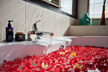 Фото Наполненная ванна в которой плавают лепестки роз (© Феминистка), добавлено: 09.06.2012 16:08