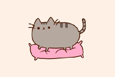 Фото Кот на розовой подушке (© StepUp), добавлено: 13.06.2012 11:19