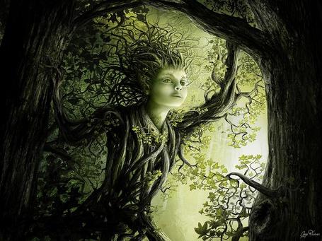 Фото Другие миры - инопланетное существо, похожая и на дерево, и на человека (© Anatol), добавлено: 16.06.2012 20:56