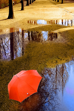 Фото Красный зонтик на дороге после прошедшего дождя.  Фотограф Lester A. Garcia
