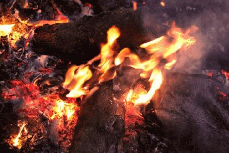 Фото Дрова в костре (© StepUp), добавлено: 21.06.2012 11:13