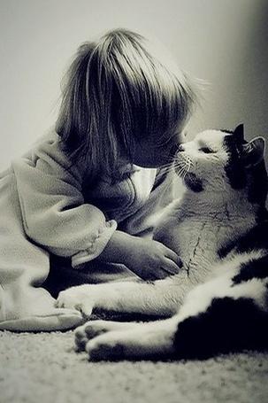Фото Маленький ребенок целует кошку (© Sveta_Sherer), добавлено: 23.06.2012 04:33