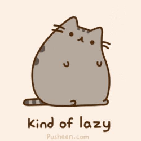 Фото Pusheen the cat / Кот Пушин сидит, наклонив голову набок (Kind of lazy / Разновидность лени) (© Кофе мой друг), добавлено: 23.06.2012 14:53