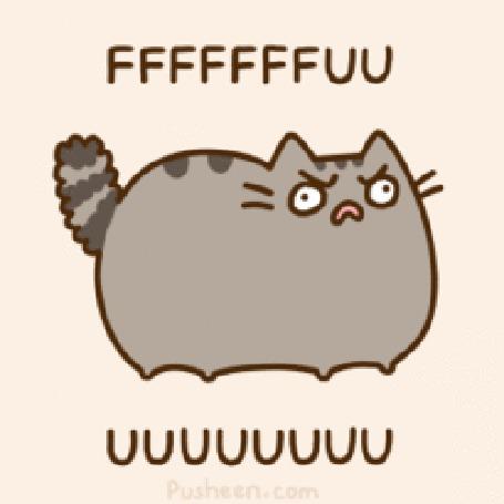 Фото Pusheen the cat / Кот Пушин скорчил недовольную гримасу (Fffffffuuuu / Ффффуууу) (© Кофе мой друг), добавлено: 23.06.2012 14:59