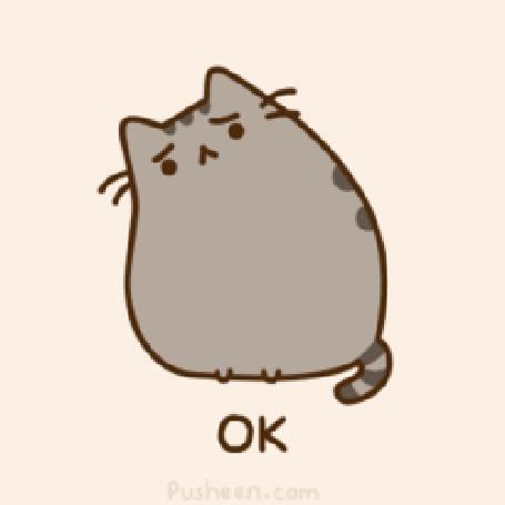 Фото Pusheen the cat / Кот Пушин повинно склонил голову (Ok / Хорошо) (© Кофе мой друг), добавлено: 23.06.2012 15:04