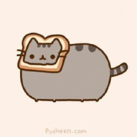 ���� Pusheen the cat / ��� ����� � ������ ����� �� ������ (� ���� ��� ����), ���������: 23.06.2012 15:23