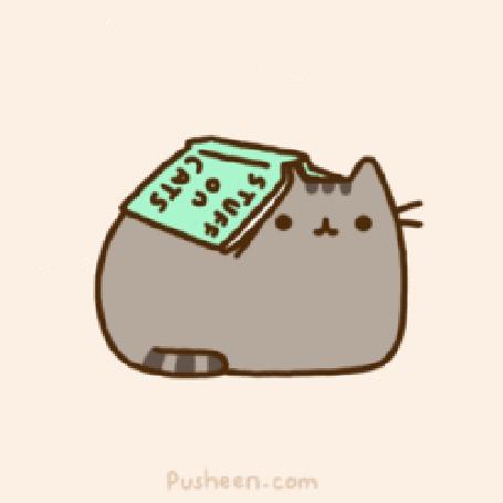 Фото Pusheen the cat / Кот Пушин лежит под книгой 'Stuff on cats / Материал о кошках' (© Кофе мой друг), добавлено: 23.06.2012 15:27