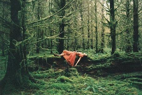 Фото Девушка в персиковом платье легла на бревно, покрытое мхом